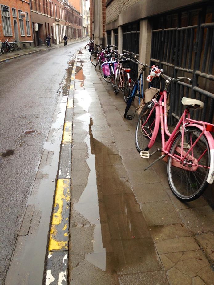 Verwaterd voetpad. Roze Fiets. Foto Hendrik Elie Vanden Abeele voor Te Voet in de Stad.