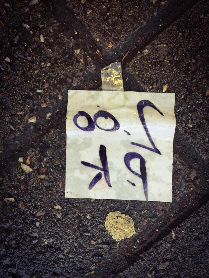 Twee euro per kilo. Te Voet in de Stad. Foto Hendrik Elie Vanden Abeele