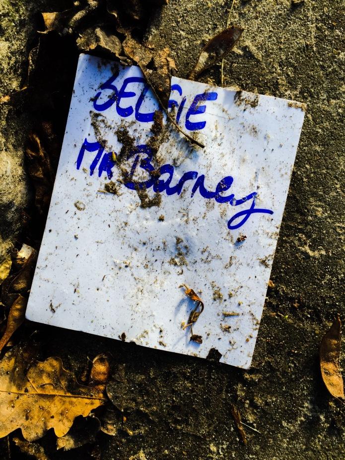 Mr. Barney. Te Voet in de Stad. Foto Hendrik Elie Vanden Abeele