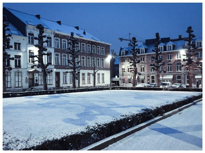 Salons Georges. Te Voet in de Stad. Foto Hendrik Elie Vanden Abeele