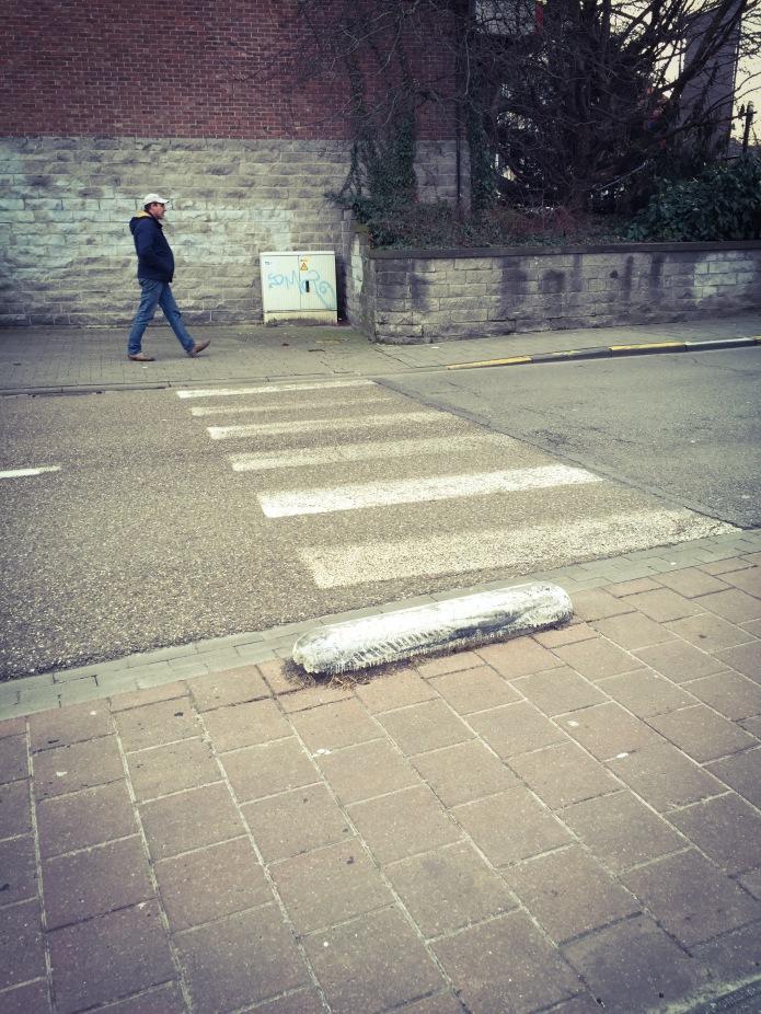 Zebrapad. Te Voet in de Stad. Foto Hendrik Elie Vanden Abeele