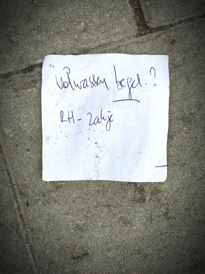 Volwassen. Foto Hendrik Elie Vanden Abeele Traen voor Te Voet in de Stad.