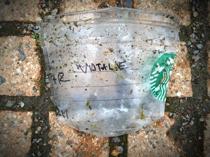 Starbucks. Foto Hendrik Elie Vanden Abeele. Natalie