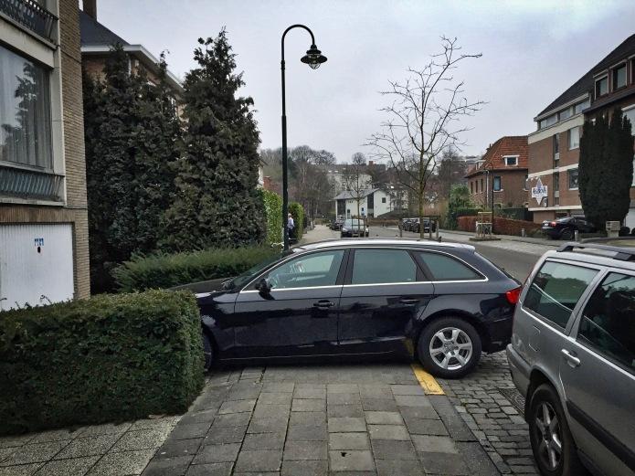 Dwarsrijder. Leuven, Redingenhof, 9 maart 2015. Te Voet in de Stad. Hendrik Vanden Abeele