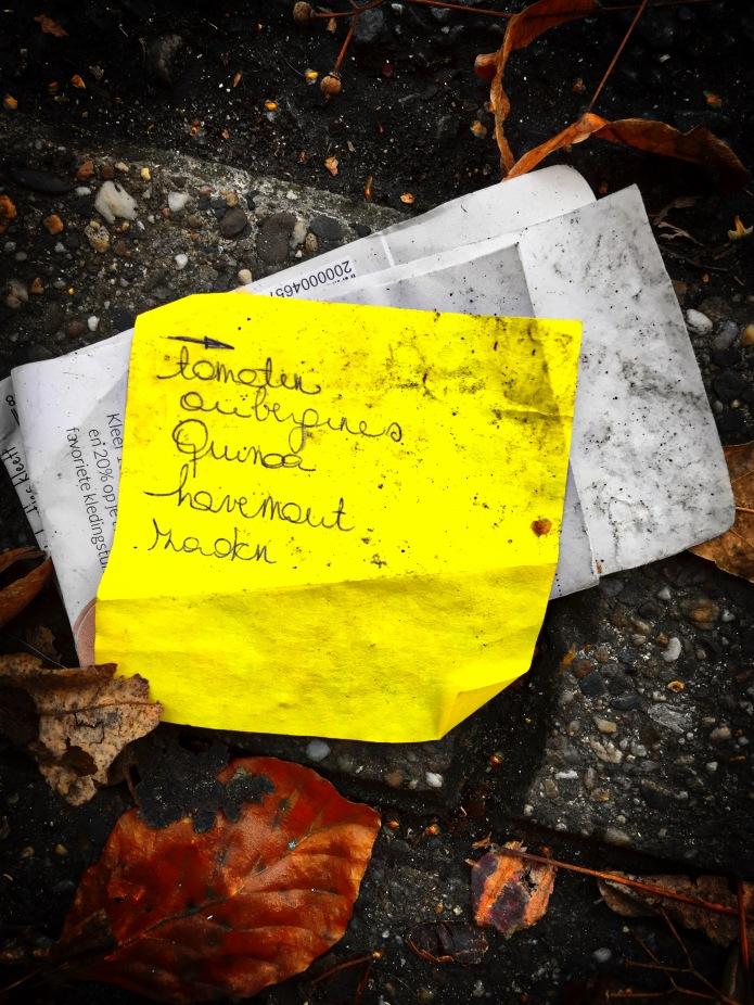 Groundtext #87 Zaden. Leuven, Redingenstraat, 15 november 2015, Foto Hendrik Elie Vanden Abeele. Te Voet in de Stad