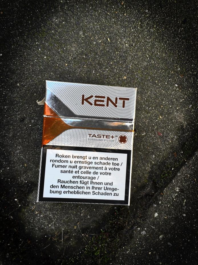 Nicotiana #4 Kent. Leuven, Pater Damiaanplein, 22 januari 2015, Foto Hendrik Elie Vanden Abeele. Te Voet in de Stad