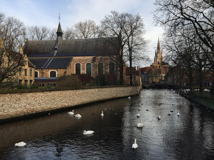 What a view. Brugge, Minnewater, 17 november 2015, Foto Hendrik Elie Vanden Abeele. Te Voet in de Stad