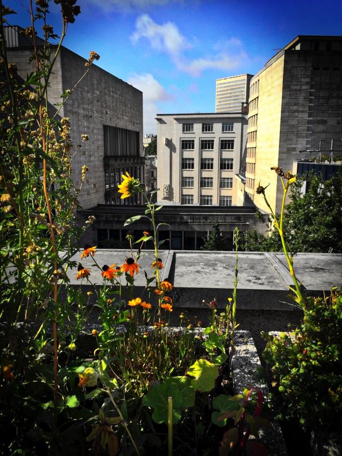brussel-dak-koninklijke-bibliotheek-28-augustus-2015-foto-hendrik-elie-vanden-abeele-te-voet-in-de-stad