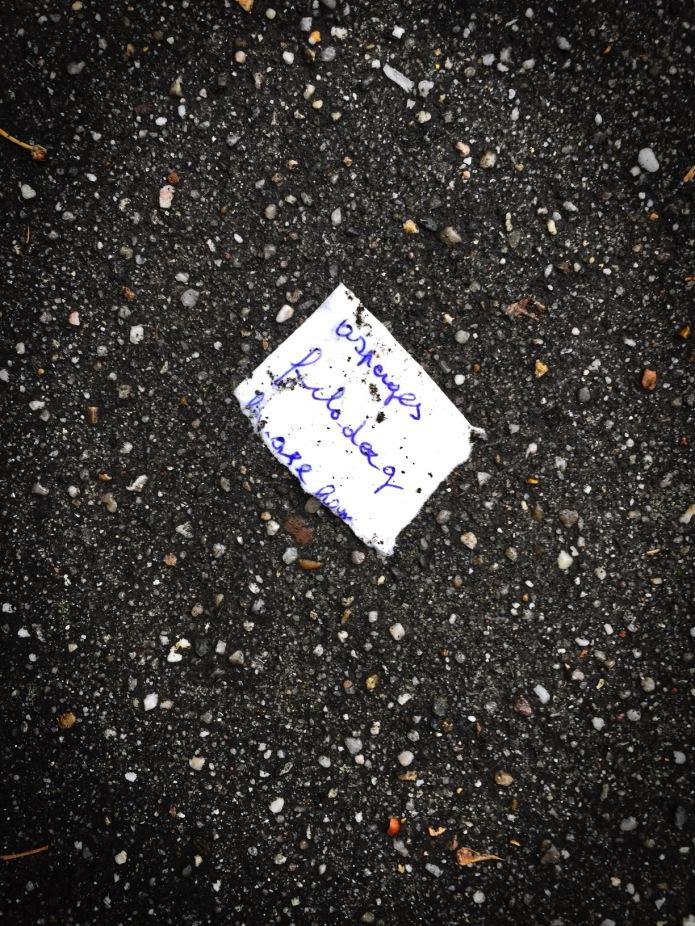 groundtext-151-asperges-filodeeg-leuven-remi-vandervaerenlaan-18-juni-2015-foto-hendrik-elie-vanden-abeele-te-voet-in-de-stad
