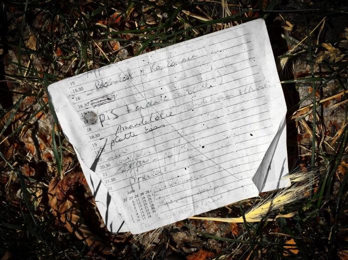 groundtext-154-pis-heverlee-geldenaaksebaan-1-juli-2015-foto-hendrik-elie-vanden-abeele-te-voet-in-de-stad