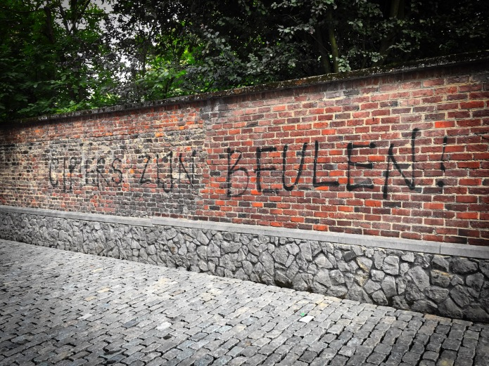 teken-aan-de-wand-71-cipiers-leuven-janseniusstraat-2-september-2015-foto-hendrik-elie-vanden-abeele-te-voet-in-de-stad