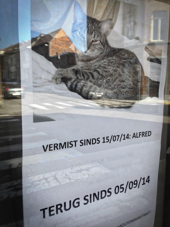 terug-thuis-leuven-kaboutermansstraat-september-2014-foto-hendrik-elie-vanden-abeele-te-voet-in-de-stad