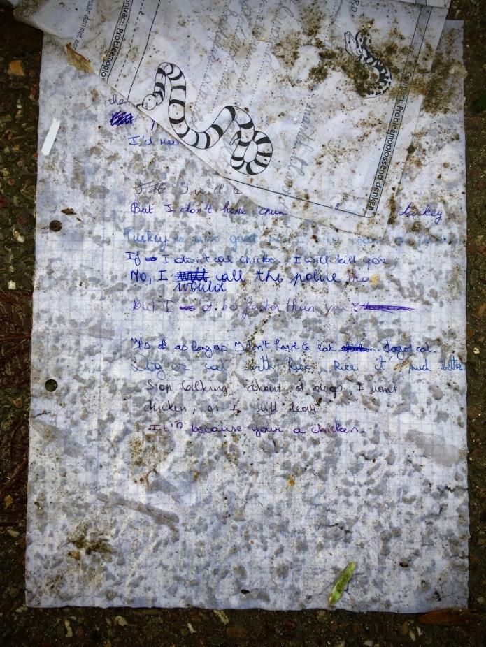 groundtext-158-chicken-leuven-tervuursevest-23-december-2015-foto-hendrik-elie-vanden-abeele-te-voet-in-de-stad