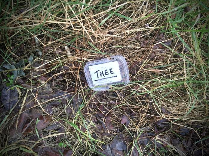 Groundtext #182 Thee. Heverlee, Geldenaaksebaan, 3 februari 2016, Foto Hendrik Elie Vanden Abeele.jpg
