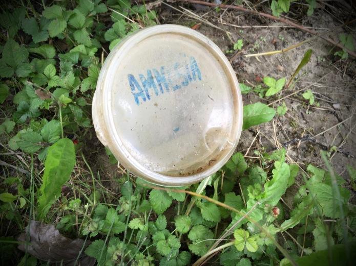 groundtext-225-amnesia-heverlee-abdijdreef-27-juni-2016-foto-hendrik-elie-vanden-abeele
