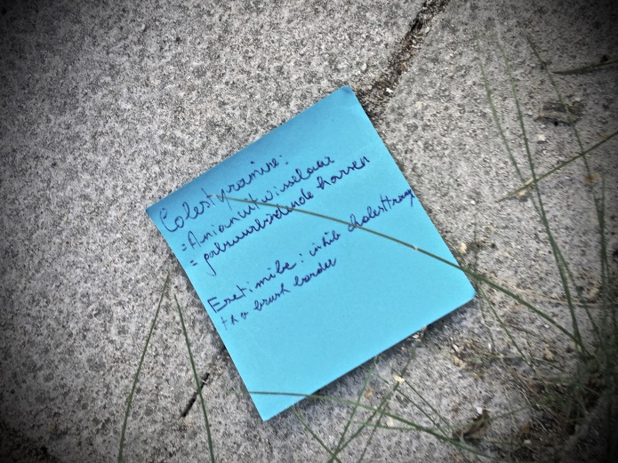 groundtext-249-colestyramine-leuven-minderbroedersstraat-28-september-2016-foto-hendrik-elie-vanden-abeele