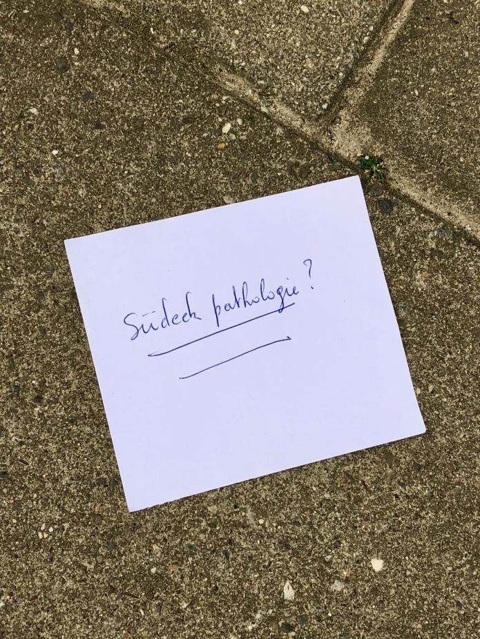 Groundtext #259 Complex regionaal pijnsyndroom. Leuven, Janseniusstraat, 12 september 2018. Te Voet in de Stad, Foto Hendrik Elie Vanden Abeele